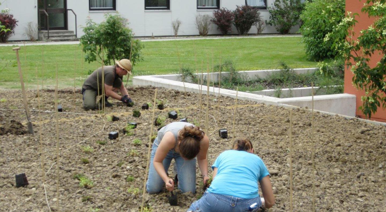 Agrarzentrum Landshut-Schönbrunn, Fachschule für Gartenbau sowie Garten- und Landschaftsbau